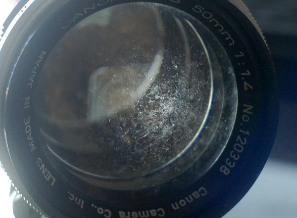 Cara Membersihkan Kamera dari Jamur